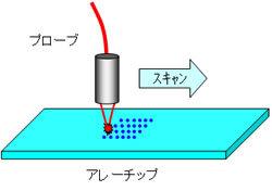 アレーチップを使用する実験