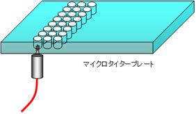 マイクロタイタープレート