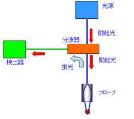 マイクロオプティクス構成図