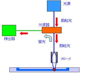 日本板硝子製の蛍光検出器の構造