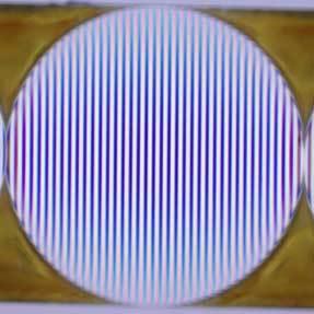 生体蛍光イメージング用レンズ